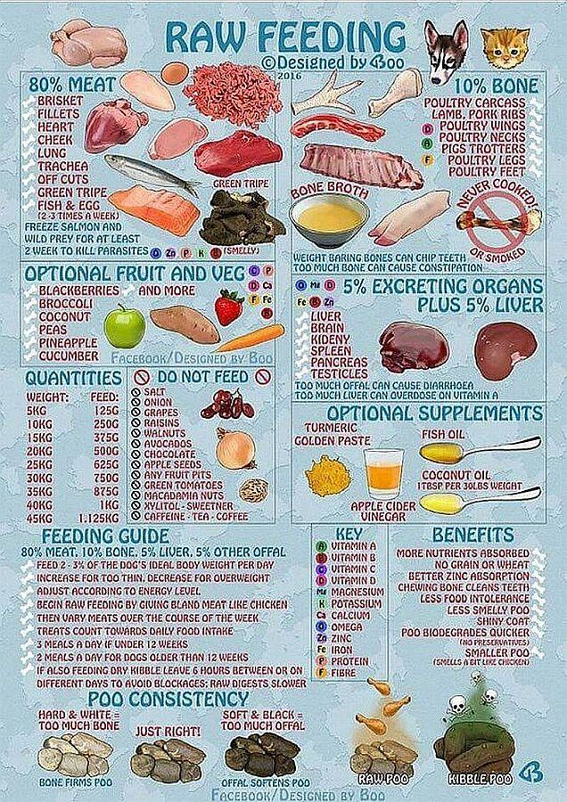 Raw Food diet-crop-r